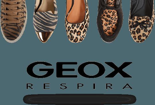 Geox Maroc